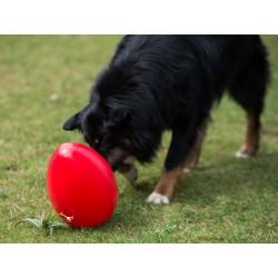 Piłka w kształcie jaja...