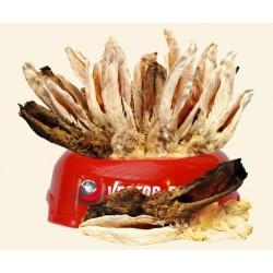 VECTOR-FOOD Uszy królicze z...